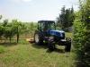 azienda_agricola1