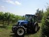 azienda_agricola2
