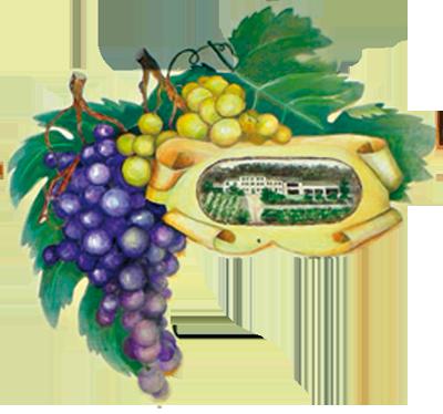 Logo Casa Albaria